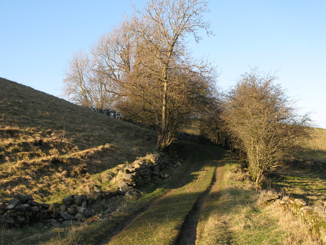 Track between Nether House and the (former) Mohope Head Lead Mine