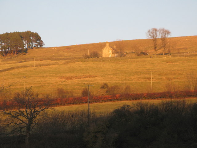 Late afternoon sun on the slopes of West Allen Dale