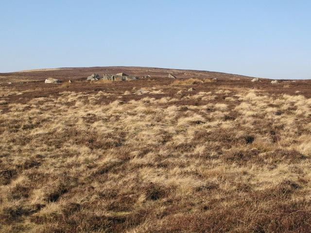 Rock outcrop on Riddlehamhope Fell