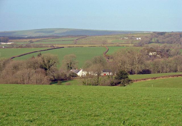 Meadow at Churchland Farm