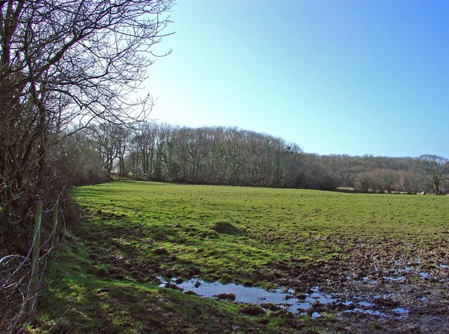 Long Wood, Pentyparc