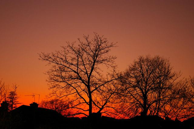 Urban Sunset in South Lodge Drive, London N14