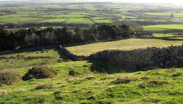 The north-south boundary wall on Mynydd Carnguwch