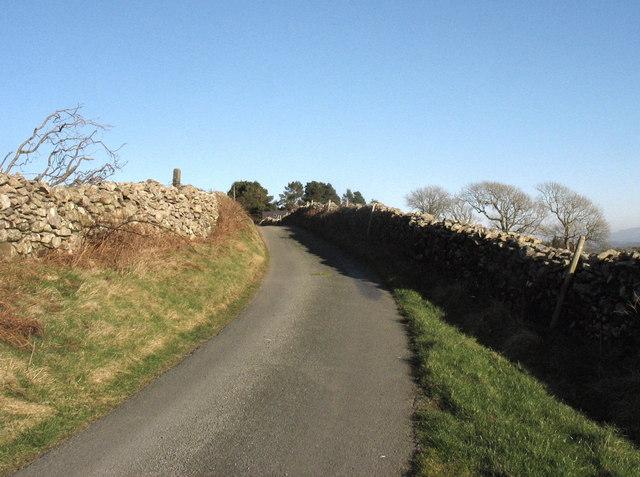 Approaching Ty'n-y-mynydd on  the Carnguwch Fawr road
