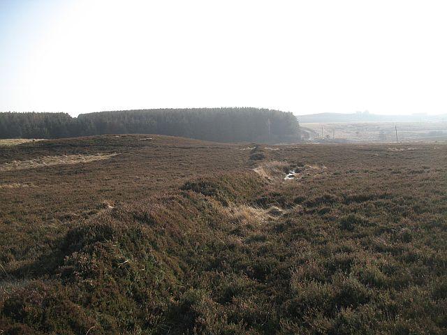 Old boundary, Sandyford Moor