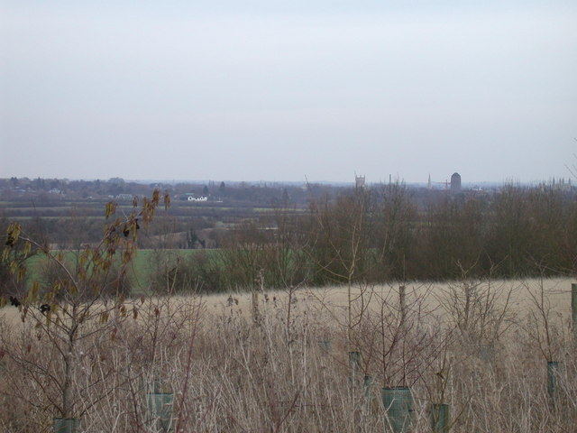 View of Cambridge from near Coton