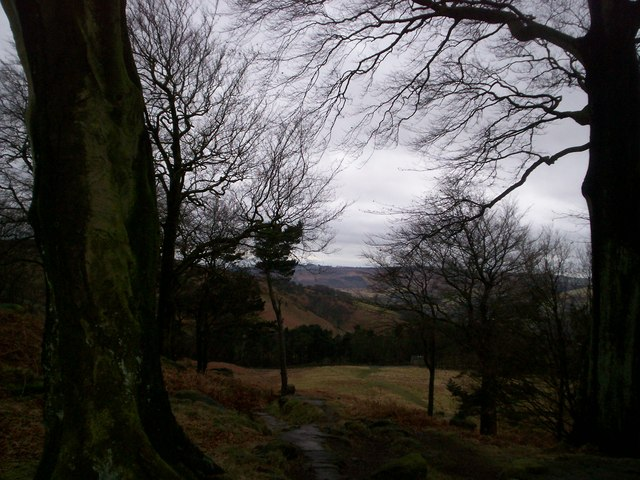Looking south from the Stanage Plantation