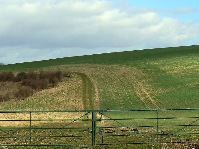 Farmland near Chilcomb