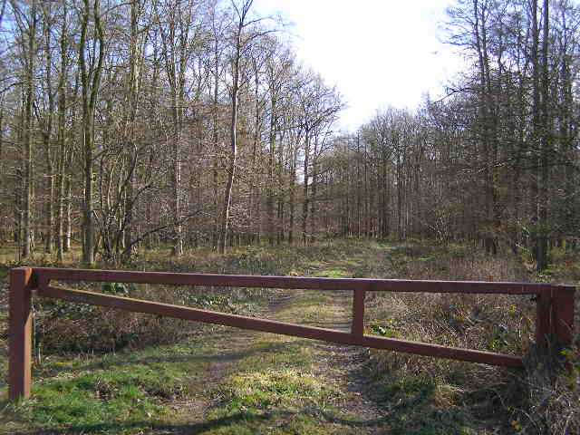Entrance to Gunboro Wood