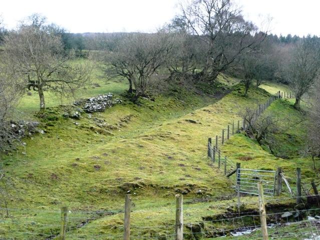Land near Ffawydden