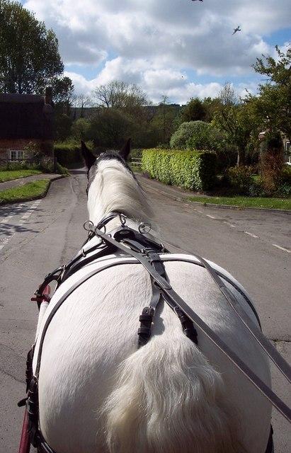 Heading down Harvest Lane