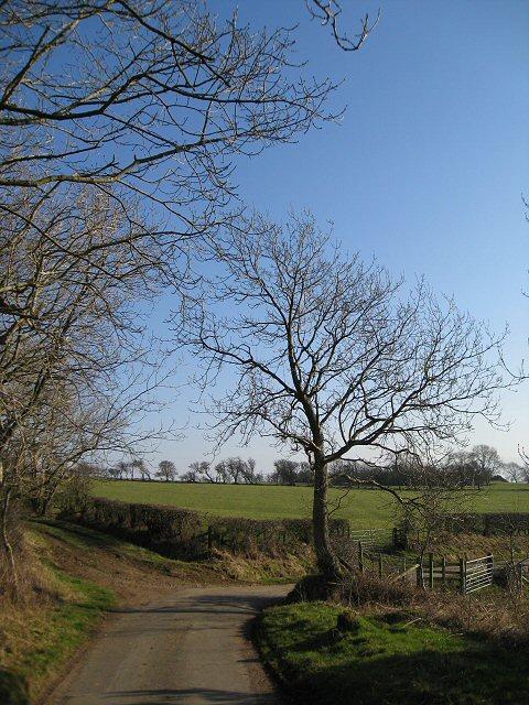 Road to Bridekirk