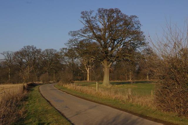 Lane through Oakly Park