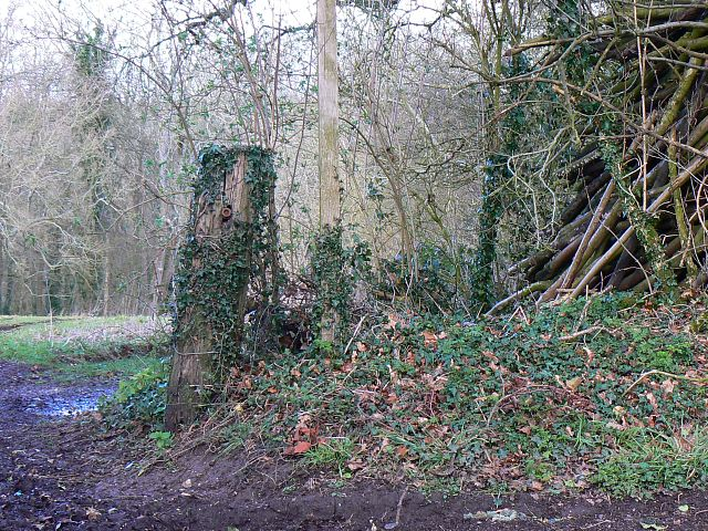 Footpath entrance, Ridge Top Lane, near Froxfield Lane