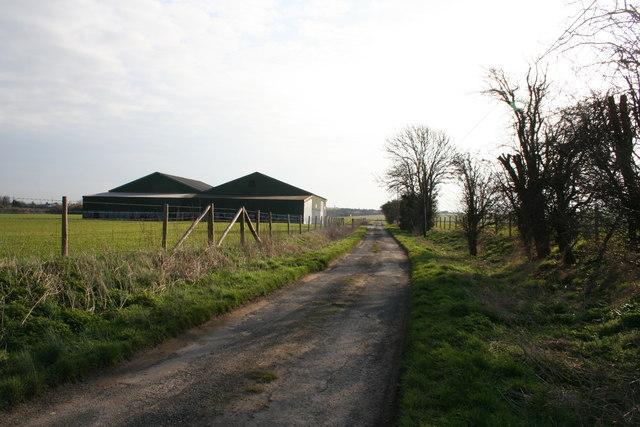 Road from Little Lollingdon