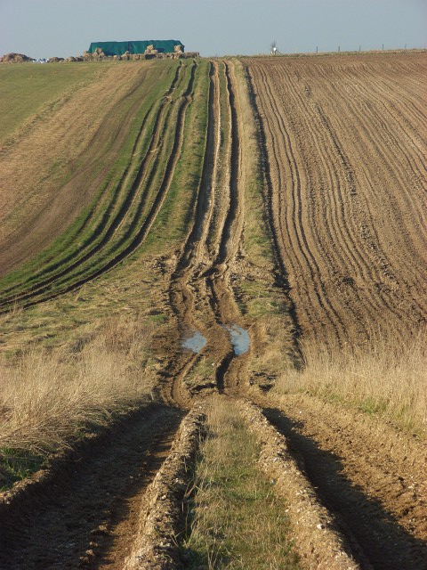 Farm track, Shrewton