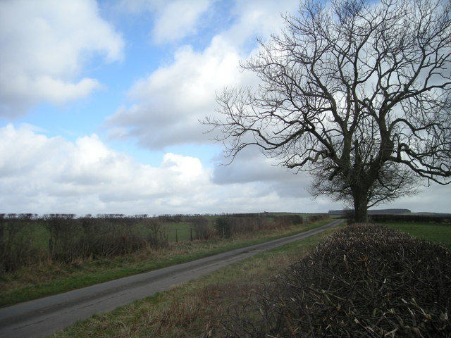 Lane near Rockhill