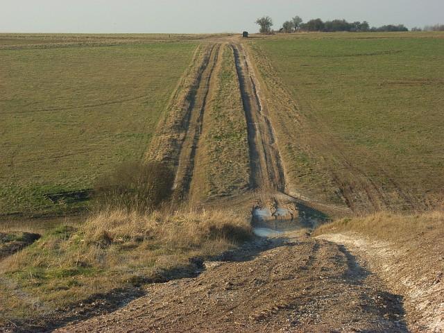 Track, Maddington Down