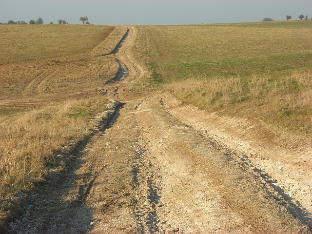 Track, Maddington Down