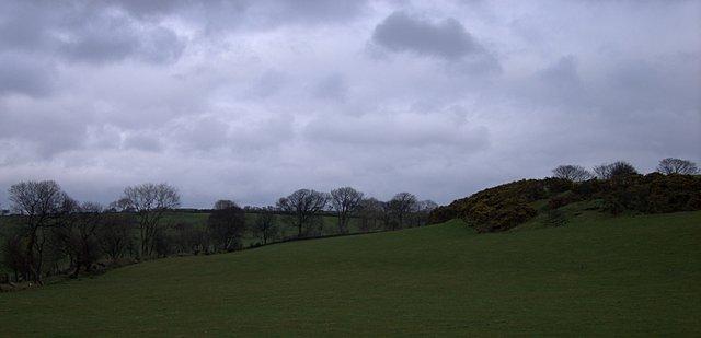 Grazing land near Pencwmcanol farm