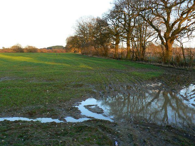Farmland, Westfork, near Burgates