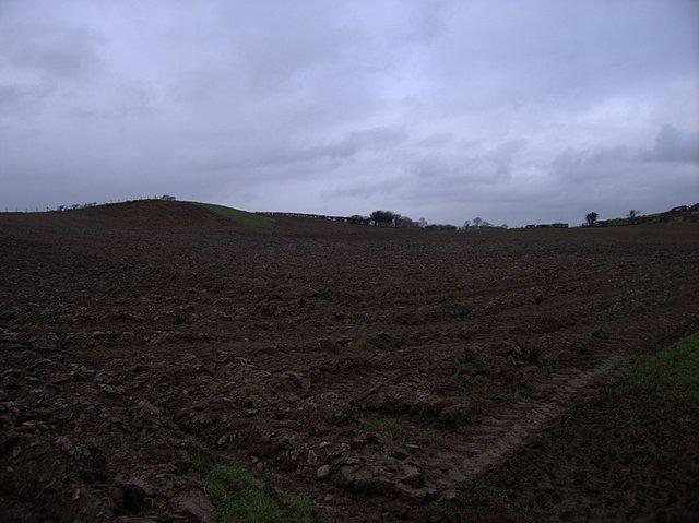 Arable field at Pencwmcanol
