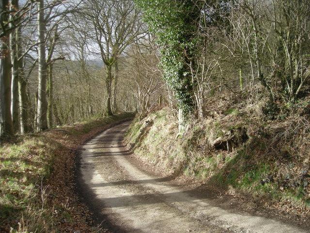 Lane at Graig