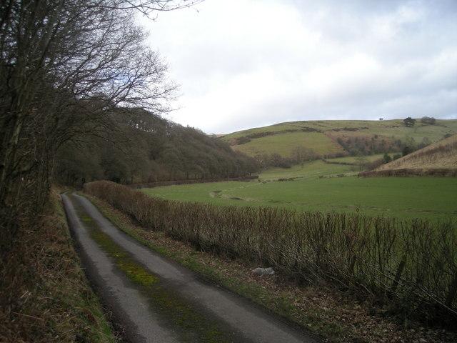 Lane beside Longwood