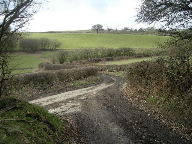 Lane junction near Cwm Collo