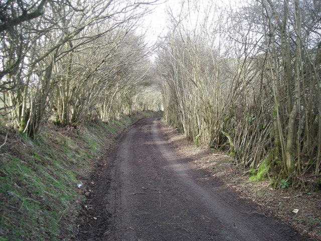 Track to New House