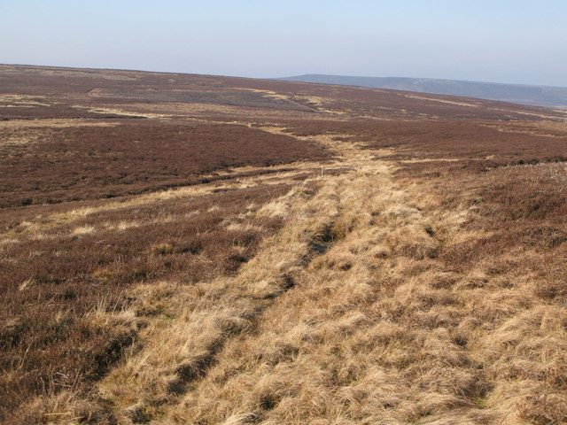The Carriers' Way on Riddlehamhope Fell (2)