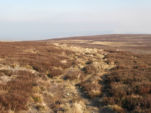 The Carriers' Way on Riddlehamhope Fell (4)