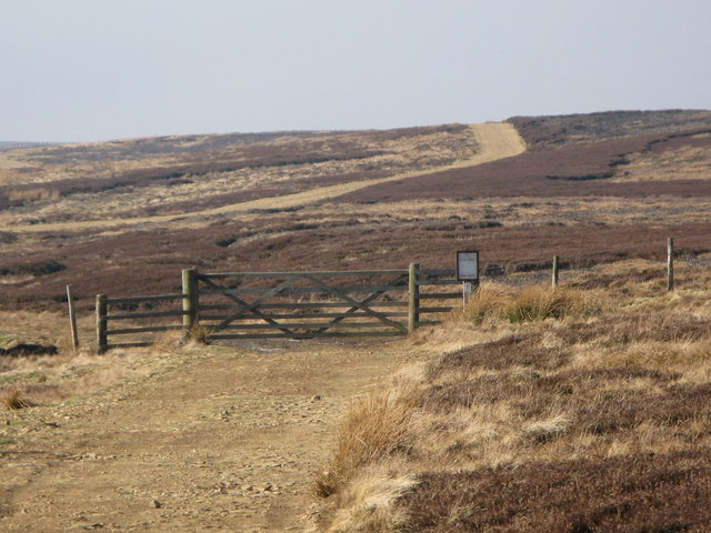Gate on the track across Riddlehamhope Fell