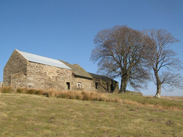 Halleywell Farm (6)