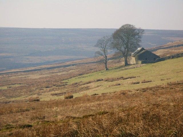 Rough pastures near Halleywell