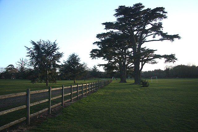 Hardwick Heath
