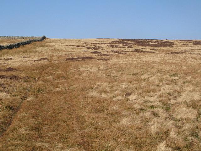 Moorland east of Halleywell