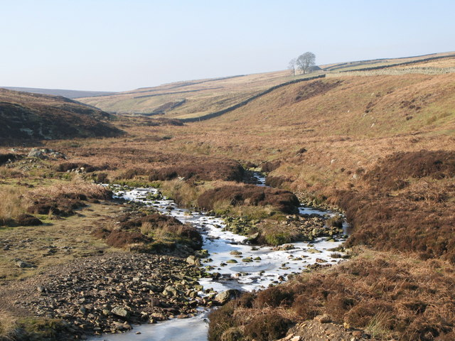 The confluence of Henshaw and Quickcleugh Burns (2)
