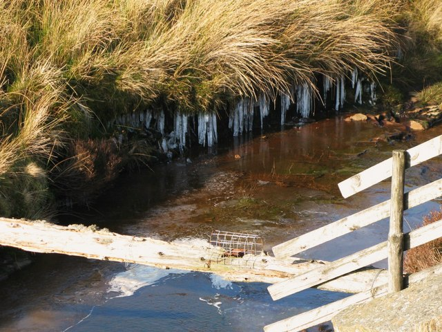 Another dangerous bridge, and icicles above Quickcleugh Burn
