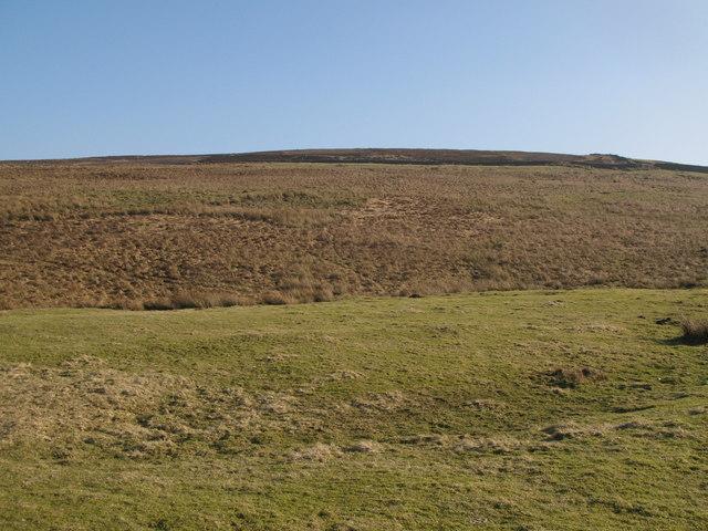 Heatheryburn Moor (3)