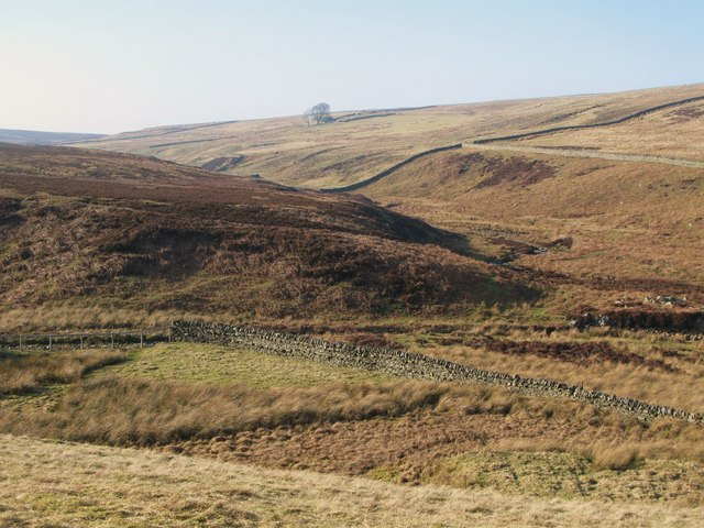 The valleys of Quickcleugh and Henshaw Burns