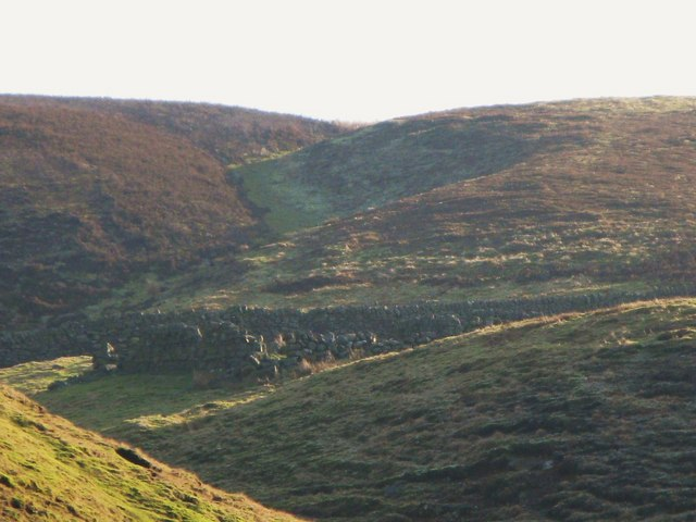Sheepfold in Green Cleugh