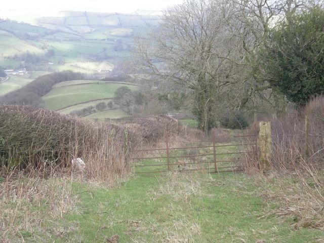 Little used farm track
