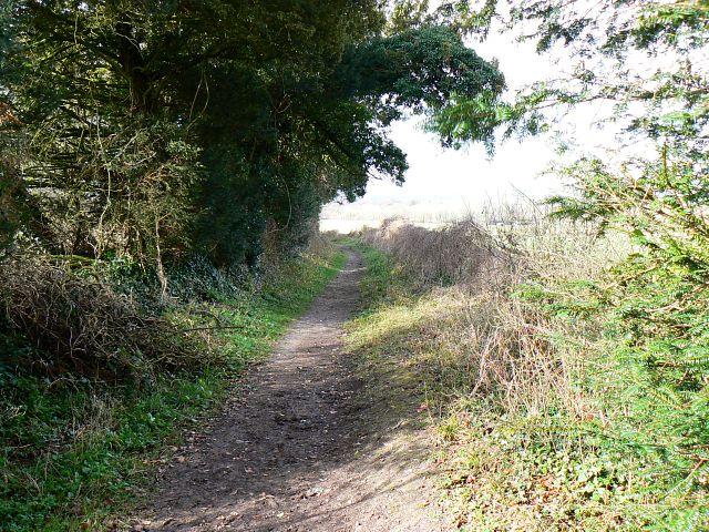Monarch's Way long distance path, near Morestead