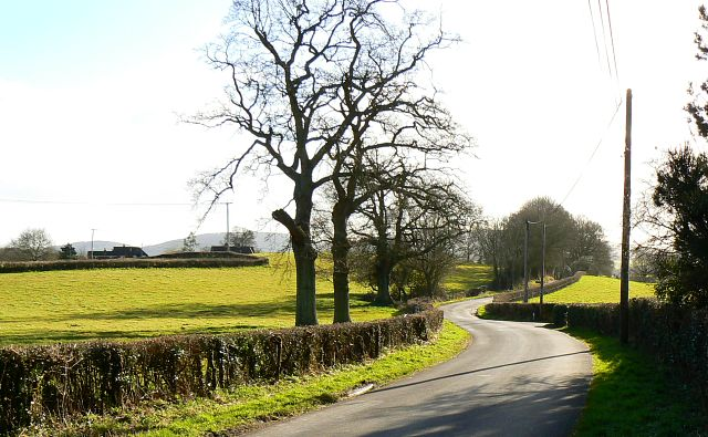 Ridge Common Lane, near Petersfield
