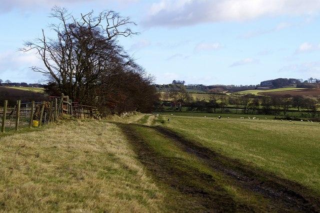 Farm track, Bonnyton