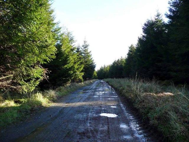 The track to Craigendunton Reservoir
