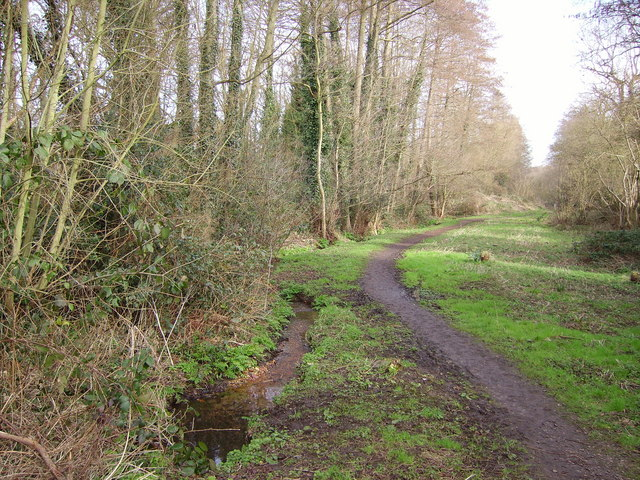 Royal Oak Valley stream and footpath