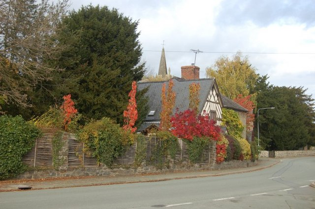 Autumn Colours in Park Road Guilsfield