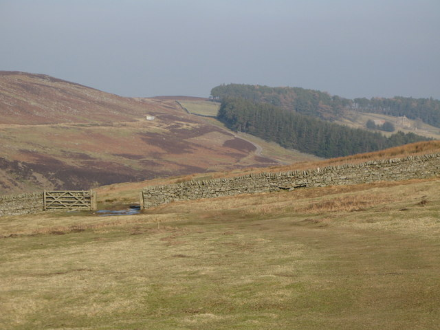The valley of Beldon Burn